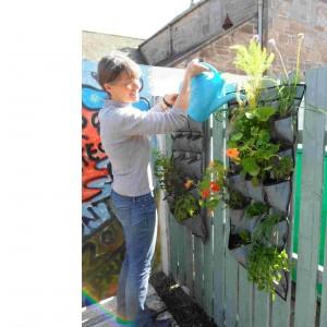 vertical gardening at its best