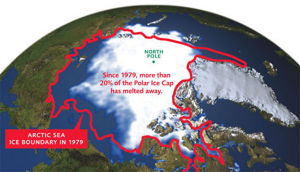 1979 polar ice cap