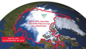 1979 polar ice cap