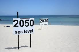 sea levels