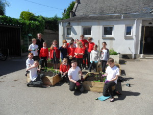 west end eco group